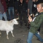 Un pacto con Black Metal